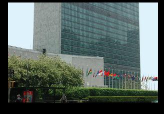 Secretariat 328x228