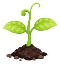 instrideonline.com dna plant clip art