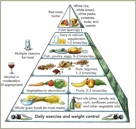 Harvard_food_pyramid-min
