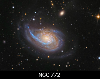 Aries NGC 772