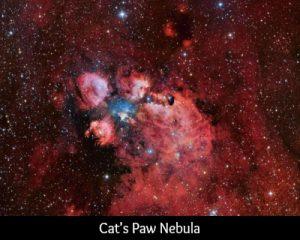 Scorpio cats paw nebula
