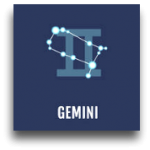 gemin1